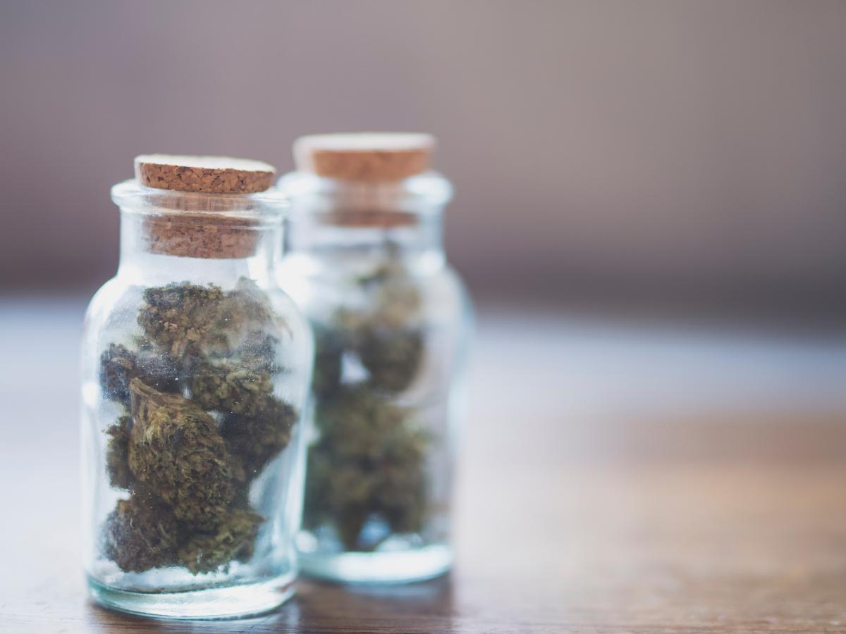 How Long is Too Long?: Cannabis Shelf Life photo